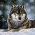 Sergej (winterwolf11)